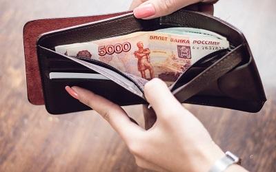 Прожиточный минимум россиян обеспокоил специалистов министерства труда
