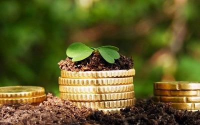 Микрокредитование малого бизнеса тормозит «теневой» рынок МФО, - Алексей Коренев